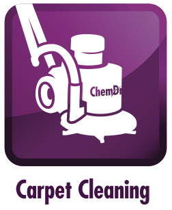 carpet cleaning hartford wi